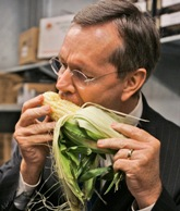 US policymakers love their corn