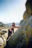 IPEX continues ascent
