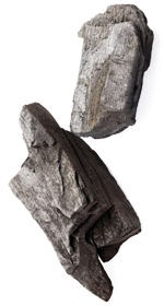 US climate bill flounders on hard rocks of coal