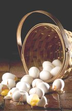 Energy sector warns against too many eggs in one basket