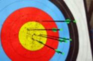 Bioresins target composites