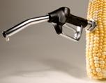 High corn threatens ethanol