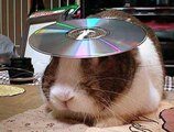 Compact discs are among the end-products of polycarbonates (PC).