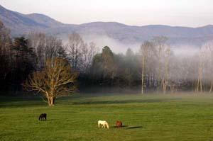 Appalichia mountains, Rex Features