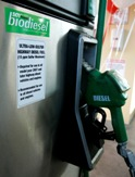 A biodiesel fuel pump