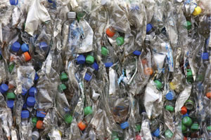 PET recycling Rex Features