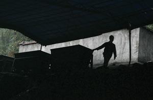 Coal mining Rex Features