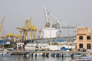 Port Rex Features