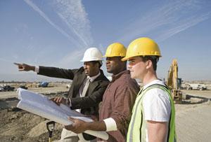Construction Rex Features