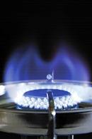 US has natural gas to burn