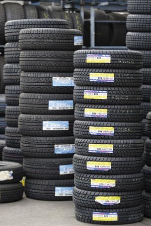 Tyres Rex