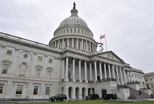 Congress Rex Features