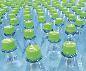 PET bottles Rex Features