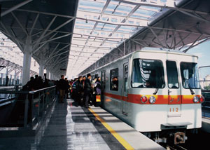 Chinese rail Reex Features
