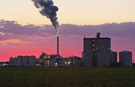 Ethanol plat (source: Design Pics Inc/REX/Shutterstock)