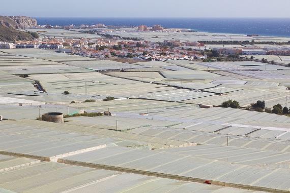Plastic farming