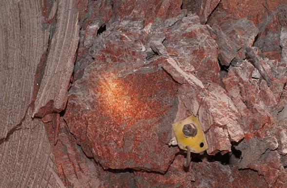 Boulby Potash mine.