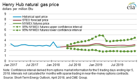 Natural Gas Price Fluctuation Analysis
