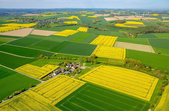 Agricultural fields in North Rhine-Westphalia, Germany