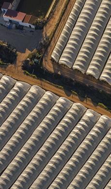Hundreds of thousands of polytunnels, Huelva, Spain - Jun 2017